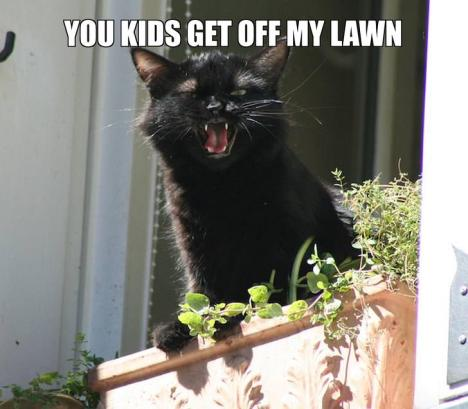 you-kids-get-off-my-lawn